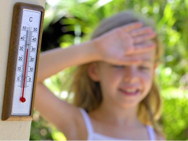 ВРостовской области предполагается аномальная жара