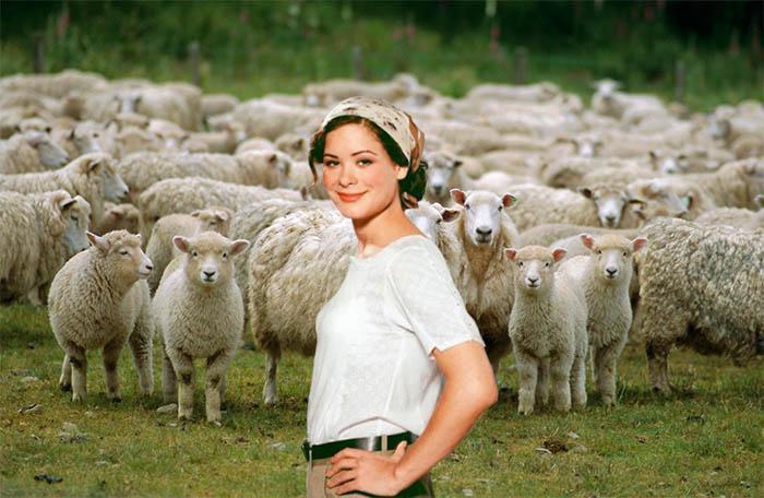 Маша и овцы //Коллаж: