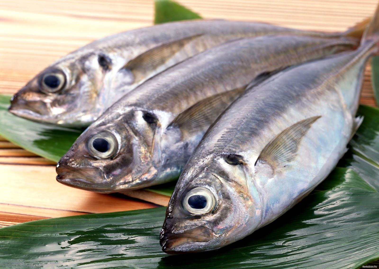 Рыбаки ростов рыба оптом