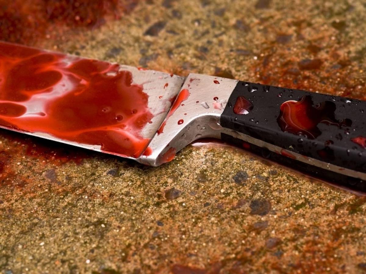 Заубийство матери иеезнакомого гражданин Аксая получил 17 лет колонии
