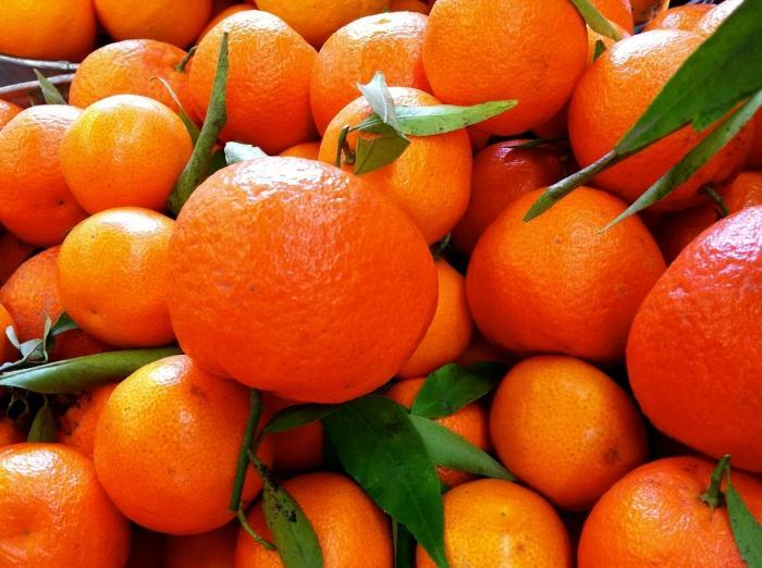ВРостове уничтожено неменее 1 тонны санкционных фруктов иовощей