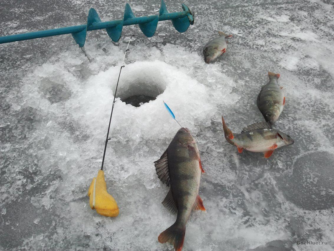 Рыбак умер, провалившись под лед вЧертковском районе