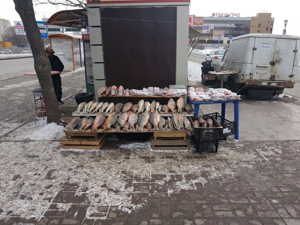 Около гипермаркета «Окей» наМалиновского уничтожили 40кг рыбы