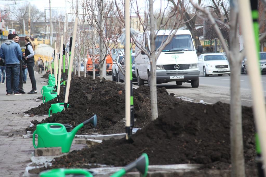 Народные избранники донского парламента высадили деревья впарке «Дружба»