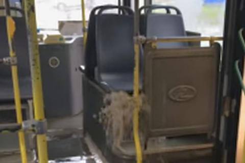 Вростовском автобусе издыры забил фонтан