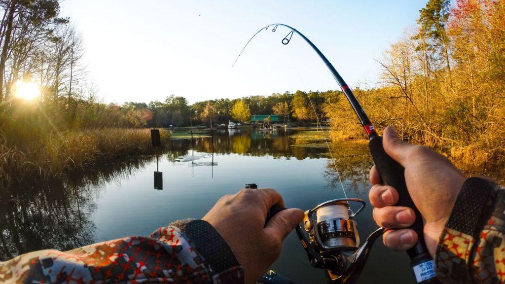 ВРостовской области фестиваль «Народная рыбалка— 2017» собрал свыше 300 участников