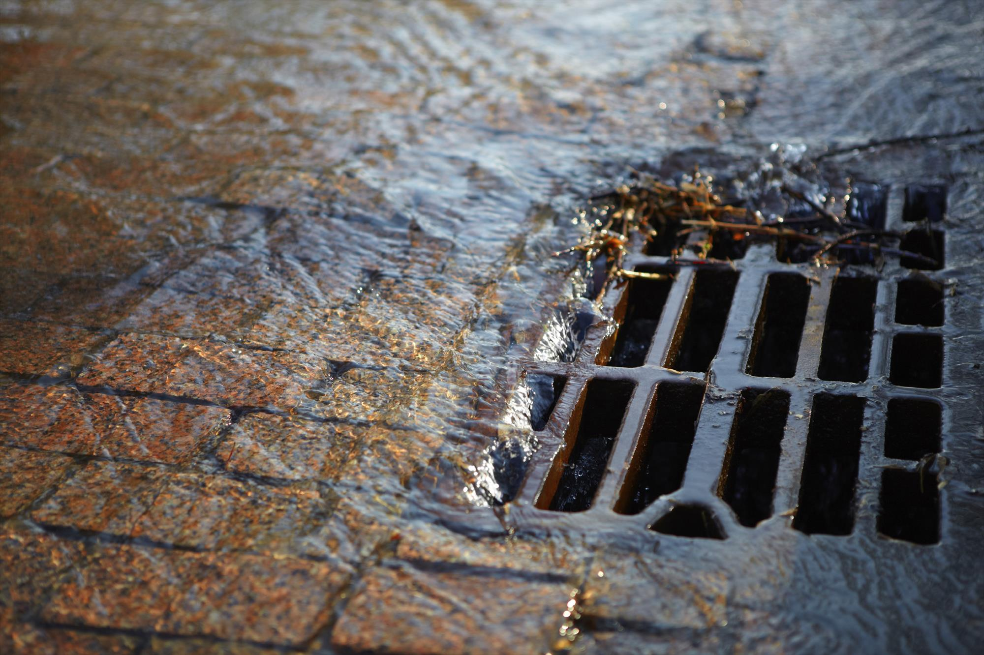 ВРостове насмену исодержание ливневок истратят 5 млн руб.