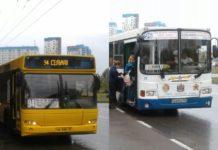 Автобусы Ипопат-Юг и АТП-3 на маршруте №94 и 96//Фото: Ассоциация работников транспорта и туризма (АРТТ)