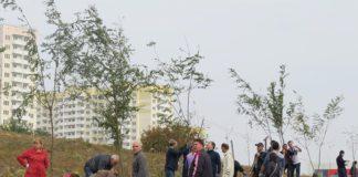В Суворовском высадили 170 акаций в парке 70-летия Победы //Фото: пресс-служба ВКБ-Новостройки