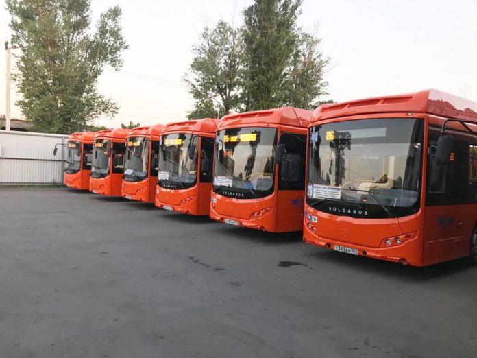 Новые автобусы//Фото: ИПОПАТ-Юг