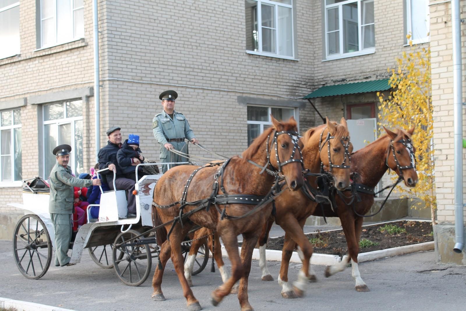 Казаки//Фото: правительство Ростовской области