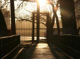 Ростовские улицы во время режима самоизоляции //Фото: Валентина Тарасова