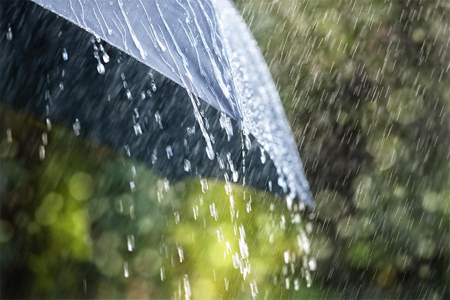 создания самые лучшие красивые живые картинки дождь этого обаме пришлось