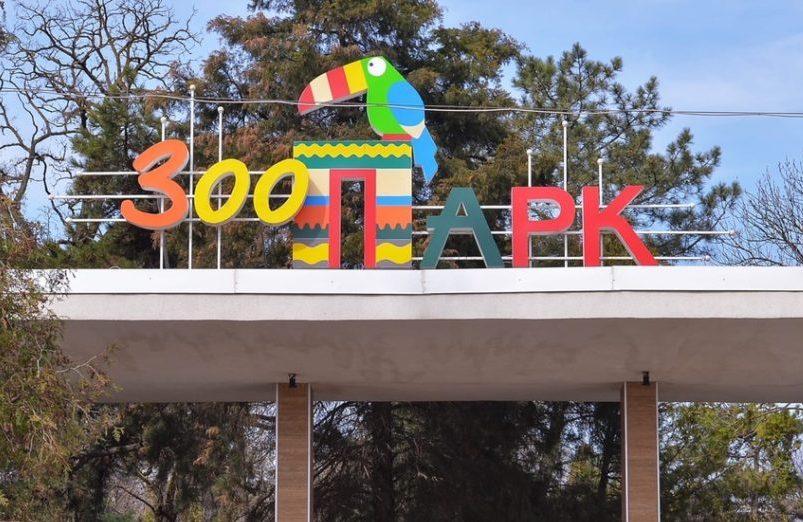 Ростовский зоопарк вошел в Европейскую ассоциацию зоопарков и аквариумов //Фото: пресс-служба зоопарка