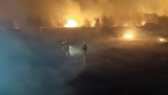 Пожар сухой растительности в Азовском районе//Фото: ГУ МЧС России по РО