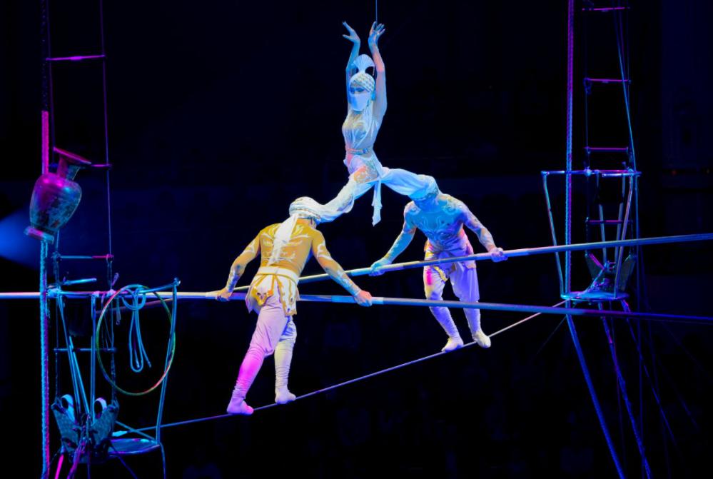 //фото: Ростовский цирк